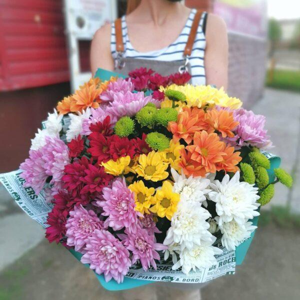 15 хризантем в цветной упаковке