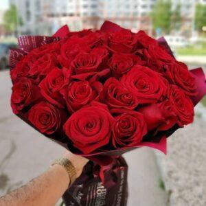 23 розы в цветной бордовой упаковке